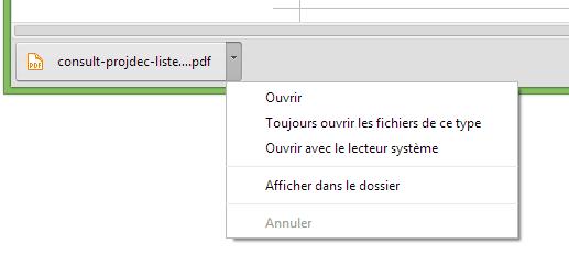 Chrome-Canary-PDF