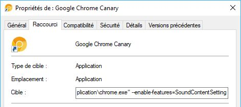 Chrome-Canary-proprietes-icone