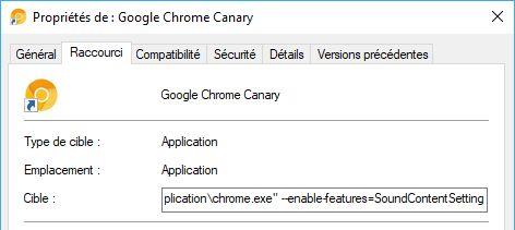 Chrome-Canary-proprietes-icone