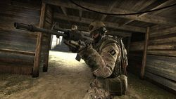 Counter Strike Global Offensive (5)