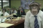 CozyDuke-Office-Monkeys-LOL-Video-logo