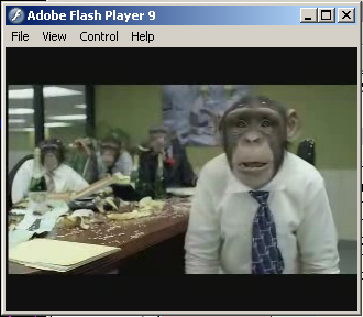 CozyDuke-Office-Monkeys-LOL-Video