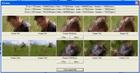 CutMyDivX! : diviser un fichier AVI en morceaux de même taille