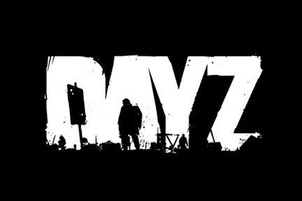 dayZ 1