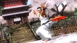 Dead or Alive 5 (10)