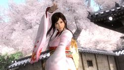 Dead or Alive 5 (12)
