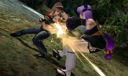 Dead or Alive Dimensions - Image 9
