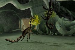 Deadly Creatures   Image 1