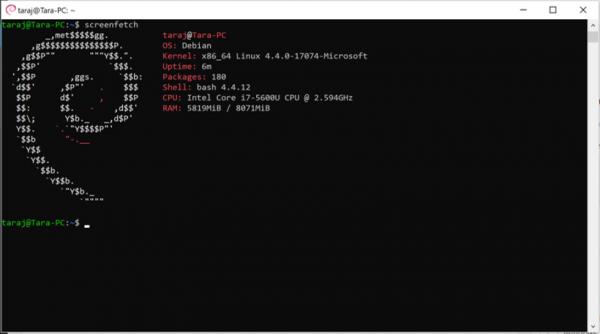 Debian-W10