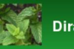 dirac_logo