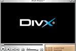 DivX (457x319)