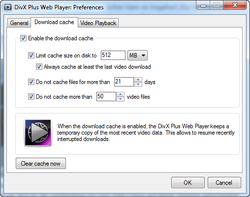 DivX Web Player screen1