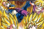 Dragon Ball Z Tenkaichi Tag Team - pochette