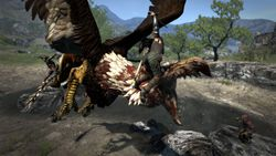 Dragon Dogma - 5
