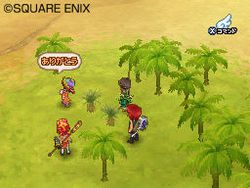 Dragon Quest IX - 15