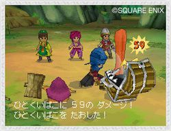 Dragon Quest IX   3
