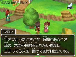 Dragon Quest IX (6)