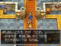 Dragon Quest VI DS - 16