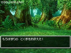 Dragon Quest VI : Realms of Reverie - 44
