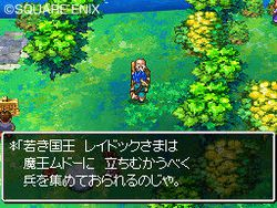 Dragon Quest VI : Realms of Reverie - 9