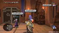 Dragon Quest X - 10
