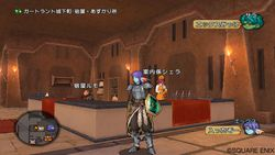 Dragon Quest X - 15