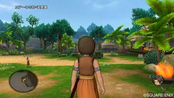 Dragon Quest X - 17