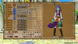 Dragon Quest X - 1