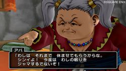 Dragon Quest X - 20