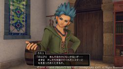 Dragon Quest XI - 8.