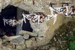 drone-pliable-uzh