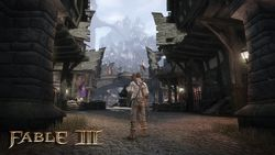 Fable III PC - Image 27