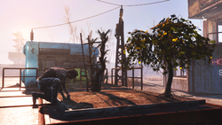 Fallout 4 Wasteland Workshop - 3