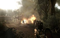 Far Cry 2   Image 16