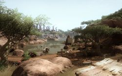 far cry 2 pack fortune (3)