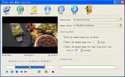 Fast AVI MPEG Splitter screen