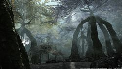 Final Fantasy XIV Heavensward - 13