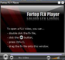 Fortop FLV Player screen2