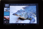 Fujitsu texture tablette