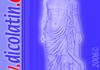 Widget Chiffres Romains - Arabes