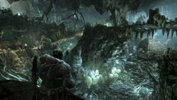 Gears Of War 2   Image 6
