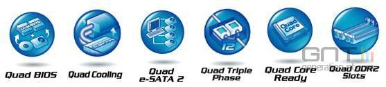 Gigabyte 6-Quad