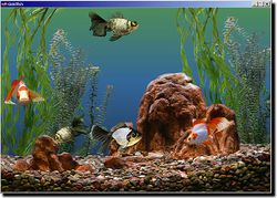 Goldfish Aquarium screen 1