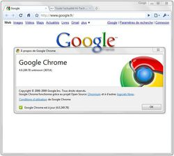Google-Chrome-4.0