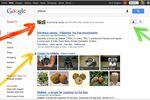 Google-resultats-personnalises
