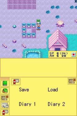 Harvest Moon DS.jpg (9)