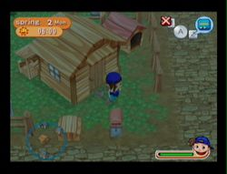 Harvest Moon Magical melody (5)
