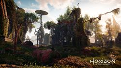 Horizon Zero Dawn - 6.