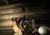 Hunt: Showdown : une première vidéo de gameplay