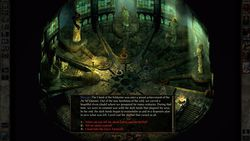 Icewind Dale Enhanced Edition - 3